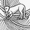 Rainforest Monkey coloring pages