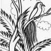 Rainforest bird coloring page