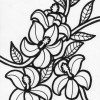 hibiscus flowers coloring page