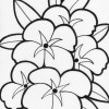 big flowers coloring page