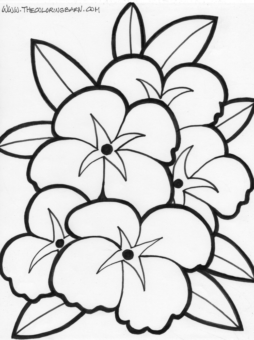 big flowers coloring page multiple flowers coloring page moon flower