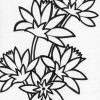 multiple flowers coloring page