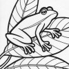 sideways frog coloring page